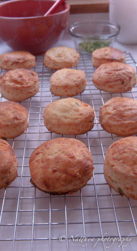 Cheddar cheese and scallion scones recipe